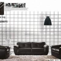 民族风/新款经典/客厅沙发/组合沙发/布艺沙发/皮沙发(2123)