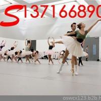 舞蹈地板 专业舞蹈地板 舞蹈地板价格